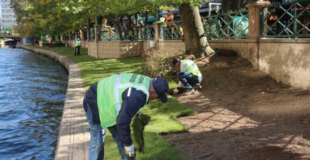 Porsuk çayı kenarında hasar gören  çimler yenilendi