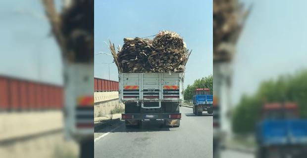 Tahta yüklü kamyon insanların canını hiçe saydı