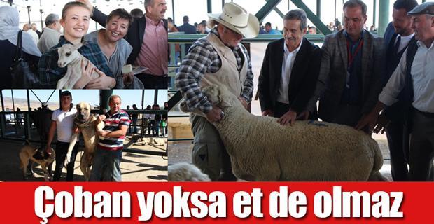 Bu da çobanların festivali