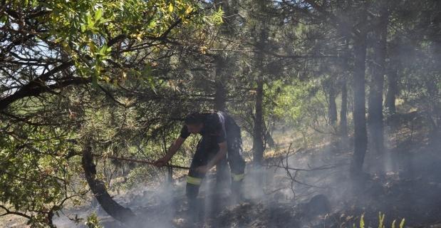 Afyonkarahisar'da mesire alanında ot yangını