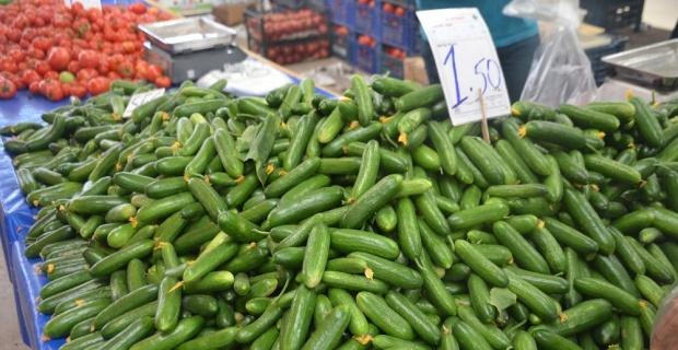 Salatalık tarlada 30 kuruş pazarda 1,5 lira