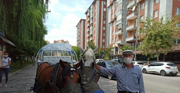 Şampuanla yıkanan atlar misafirlerini bekliyor