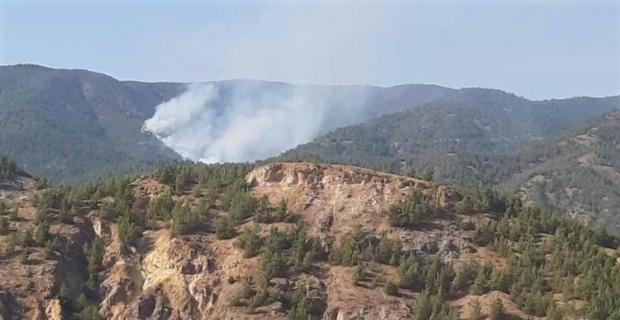 Mihalgazi'deki  yangına Ankara'dan helikopkerle su