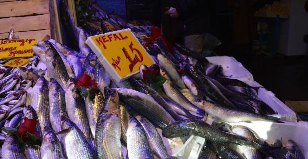 Kefal tezgâhın en ucuz balığı oldu