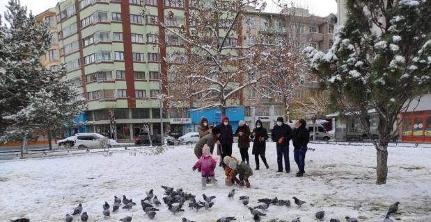 Karda sokak hayvanları unutulmadı