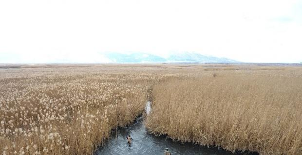 Eber Gölü'nde kaçak avcılar drone ile havadan tespit edildi
