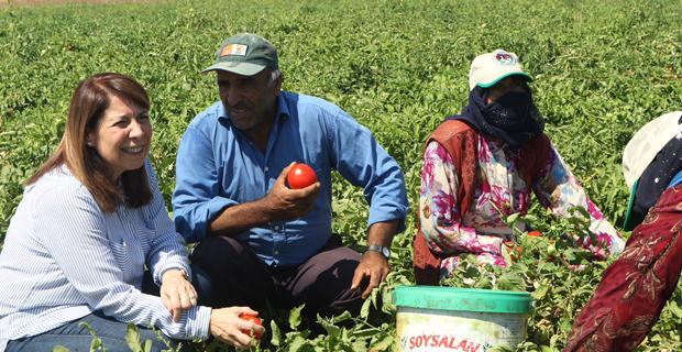 Eskişehirli çiftçilere bayram müjdesi