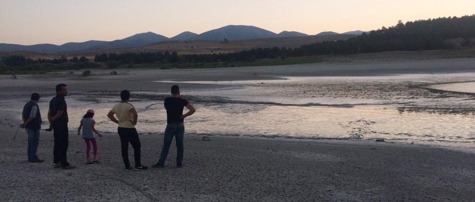 Barajı kurudu, balıklar karaya vurdu