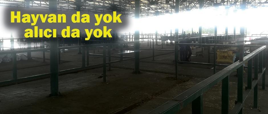 Eskişehir hayvan pazarı bomboş