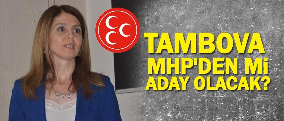 Tambova'dan MHP iddialarına yanıt