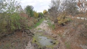 Eskişehir'de kuraklık tedirgin ediyor