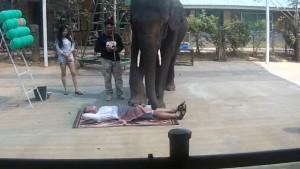 Taylandlılar masaj işini abarttı !